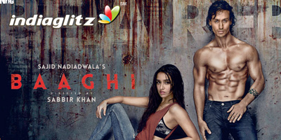 Baaghi Peview
