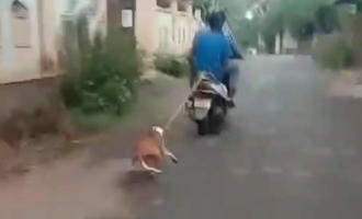 Cruelty: Man ties dog to scooter and drags along road