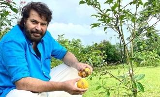 Mammootty turns a farmer; pics go viral!
